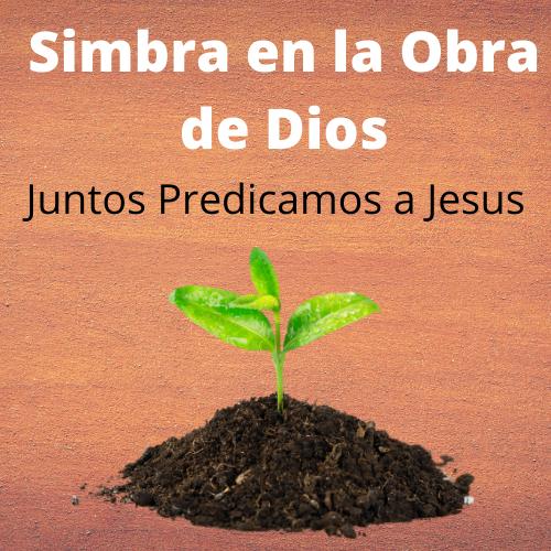 Simbra en la Obra de Dios